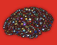 Emotional Intelligence: Traits & Development