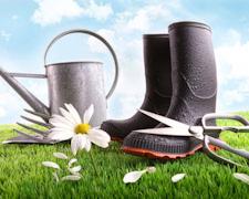 Spring Garden Tips